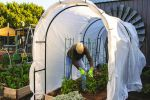 Gardeners don't have to chill out at first frost