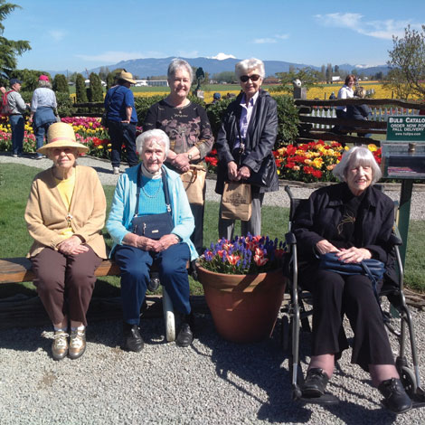 Bev More, Florence Bargmeyer, Sally Ann McLean , Norma Bartlett and Audrey Stacy posed at the Roosengarde tulip garden in La Conner.  with Mount Hood in the background. (Courtesy photo)